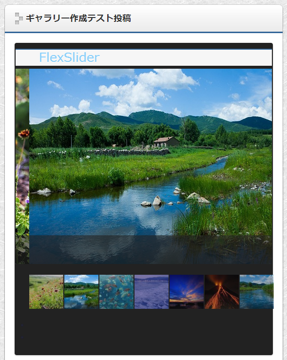 Celtis Gallery Slider